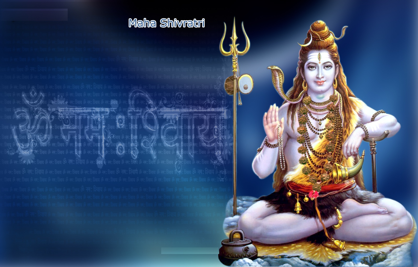 Maha-Shivratri-3439